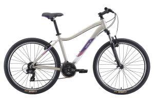 Велосипед Welt Edelweiss 1.0 RS (2021)